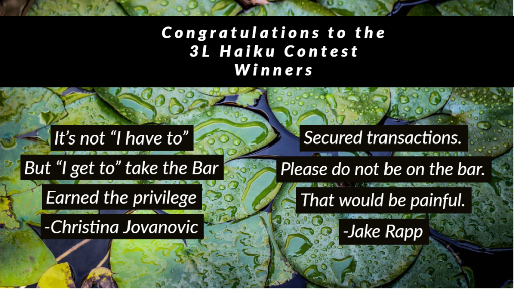 Haiku Contest Winner 2020